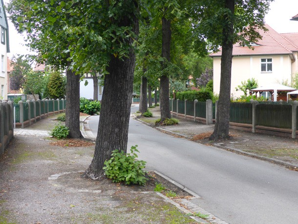 Ringstrasse_Konzeption_Gartenstadt_Marga